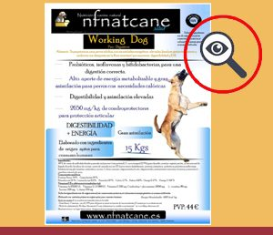 Nfnatcane Working Dog